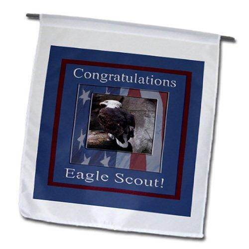 3dRose fl_40518_1 Congratulations Eagle Scout Eagle in Flag Frame ...